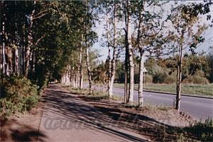Учебник фотографии - 64bita.ru